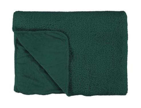Lammy groen1